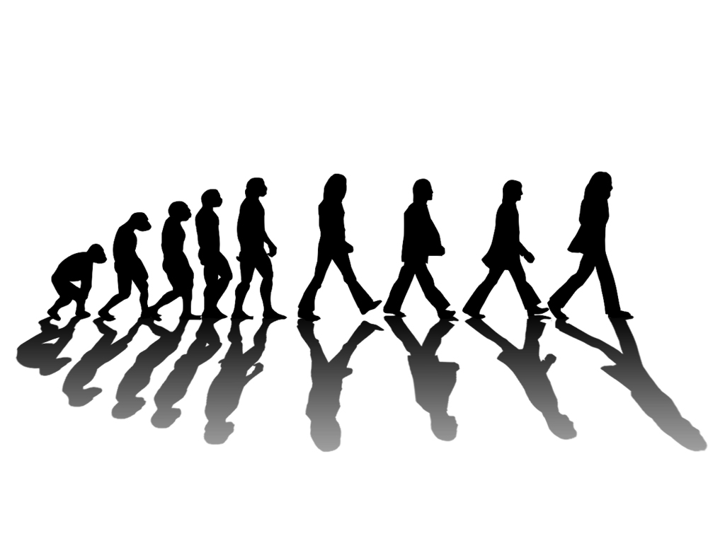 the evolution of the word freedom Evolution before darwin the word evolution first arrived in english (and in several other european languages) from an influential treatise on military tactics and drill, written in greek by the second-century writer aelian (aelianus tacticus) in translations of his work, the latin word evolutio and its.
